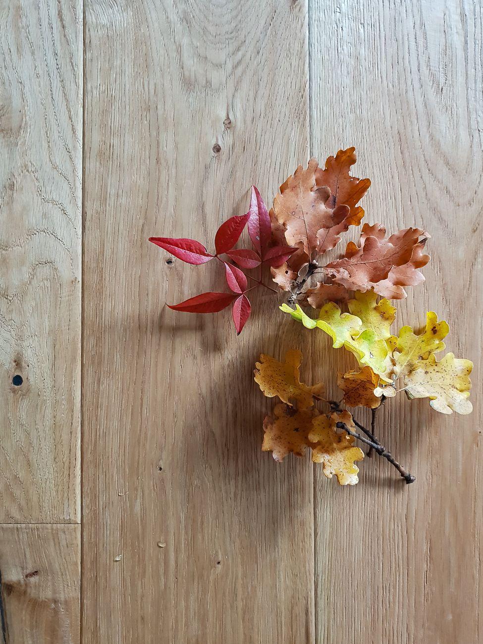 Le tavole in legno di rovere di Hometrèschich